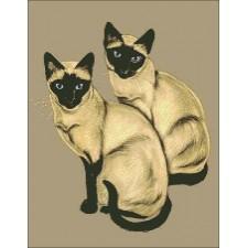Two Siamese