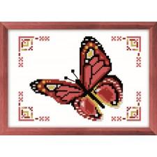Vlinder - Papillon