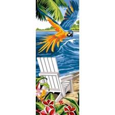 Papegaai boven strand - Vol exotique